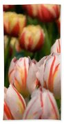 Tulips 31 Beach Towel