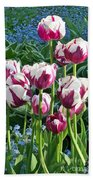 Tulips Among The Forget Me Nots Beach Towel