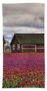 Tulips And Barns Beach Towel
