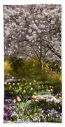 Tulips And Other Spring Flowers At Dallas Arboretum Beach Towel
