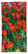 Tulips Are A Turkish Flower Bytopkapi Palace In Istanbul-turkey Beach Towel