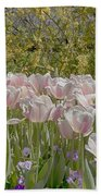 Tulips At Dallas Arboretum V45 Beach Towel