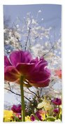 Tulips At Dallas Arboretum V46 Beach Towel