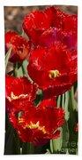 Tulips At Dallas Arboretum V83 Beach Towel