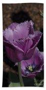 Tulips At Dallas Arboretum V88 Beach Towel
