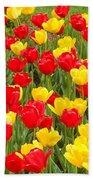 Tulips Beach Towel