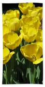 Tulips - Field With Love 18 Beach Towel