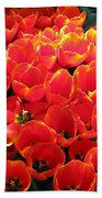 Tulips - Field With Love 28 Beach Towel