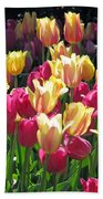 Tulips - Field With Love 35 Beach Towel