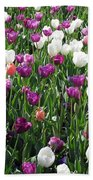 Tulips - Field With Love 60 Beach Towel