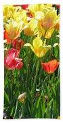 Tulips - Field With Love 65 Beach Towel