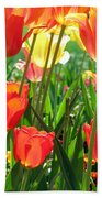 Tulips - Field With Love 69 Beach Towel