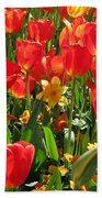Tulips - Field With Love 71 Beach Towel