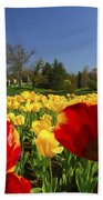 Tulips Galore  Beach Towel