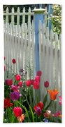 Tulips Garden Along White Picket Fence Beach Towel