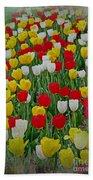 Tulips In A Field Beach Towel