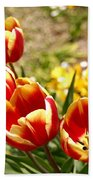 Tulips In Japan Beach Towel