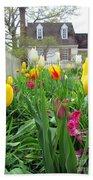 Tulips In Williamsburg Beach Towel