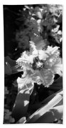 Tulips - Infrared 24 Beach Towel