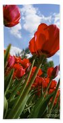 Tulips Leaning Tall Beach Towel