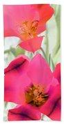 Tulips - Perfect Love - Photopower 2045 Beach Towel