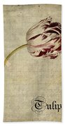 Tulips - S01bt2t Beach Towel