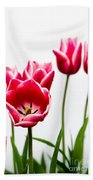 Tulips Say Hello Beach Towel