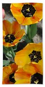 Tulips Tp Beach Towel