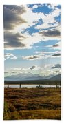 Tundra Burst Beach Towel by Chad Dutson