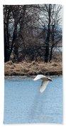Tundra Swan Flight Beach Towel