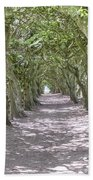 Tunnel Of Trees Beach Towel