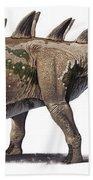 Tuojiangosaurus Multispinus Dinosaur Beach Sheet