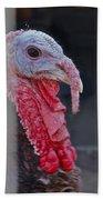 Turkey 1 Beach Towel