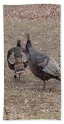 Turkey Dance Beach Towel