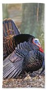 Turkey Gobbler Strut Beach Towel