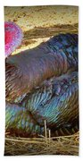Turkey Time Out Beach Towel