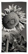 Turkish Sunflower 3 Beach Towel