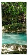 Turquoise Forest Pond On A Summer Day No3 Beach Towel