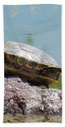 Turtle At The Lake Beach Towel