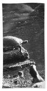 Turtle Bw Beach Sheet by Nelson Watkins