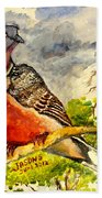 Turtle - Dove Beach Towel