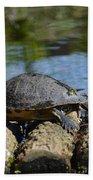 Turtle Float Beach Towel