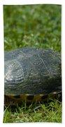 Turtle Grass Beach Towel