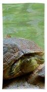 Turtle Ninjas Beach Towel
