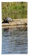 Turtle Raft Beach Towel