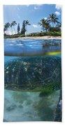 Turtle Snack Beach Towel by Sean Davey