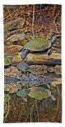 Turtle Trio Beach Towel