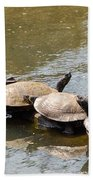 Turtles On A Log Beach Towel