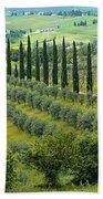 Tuscan Panoramic 3 Beach Towel