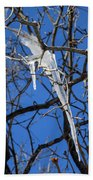 Twigs And Ice Beach Towel